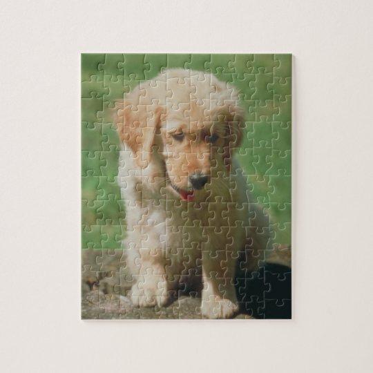 Golden Retriever Puppy Dog Puzzle
