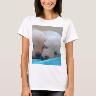 golden retriever puppy group T-Shirt