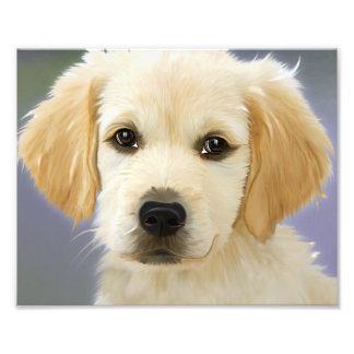 Golden Retriever Puppy Painting Art Photo
