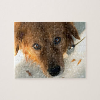 Golden Retriever Puzzle 3