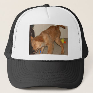 Golden Retriever Shaking It Off Trucker Hat