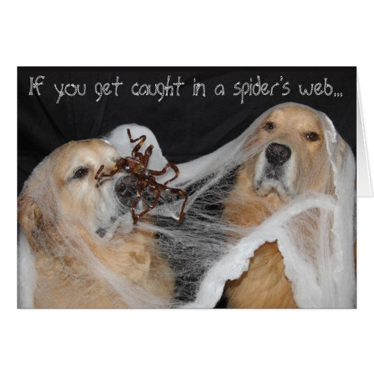 Golden Retriever Spider Web Halloween Card