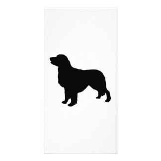 Golden Retriever sporting hunting dog Silhouette Personalized Photo Card