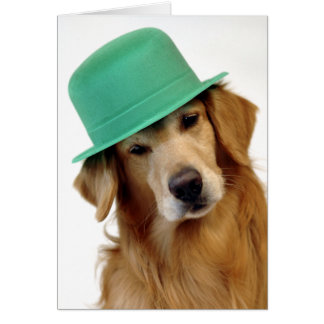 Golden Retriever St Patrick s Day Card
