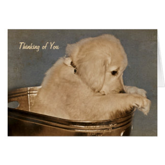 Golden Retriever Thinking of You Card