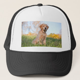 golden retriever trucker hat