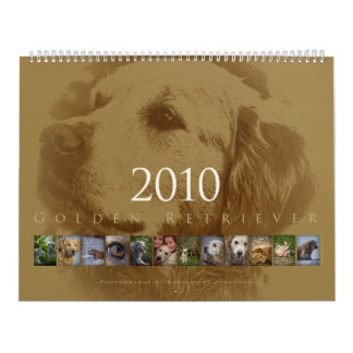 Golden Retriever - Wall Calendar 2010