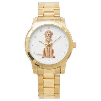 Golden Retriever Watch