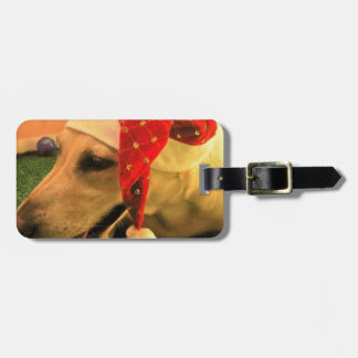 Golden Retriever Wearing Christmas Hat Luggage Tag