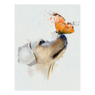 Golden Retriever With a Butterfly on Its Nose Postcard