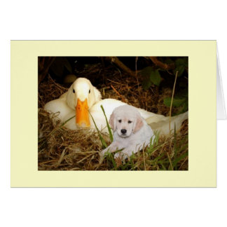 Golden Retriever With Duck Card