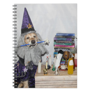 Golden Retriever Wizard's Workshop Notebooks