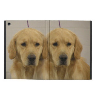 Golden Retrievers iPad Air Case