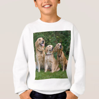 golden retrievers sweatshirt