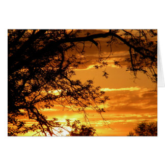 Golden Sky Through Trees Greeting Card
