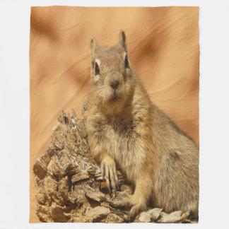 Golden Squirrel Fleece Blanket
