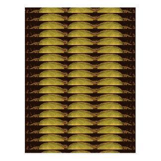 GOLDEN Strips Pattern : From VINTAGE Idol Image Postcard