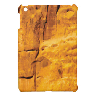 golden sun kissed stone iPad mini cover