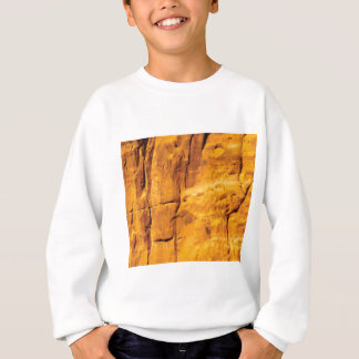 golden sun kissed stone sweatshirt