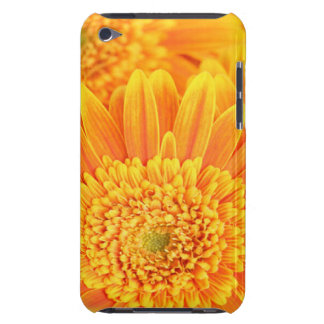 Golden Sunflower Case-Mate iPod Touch iPod Case-Mate Cases