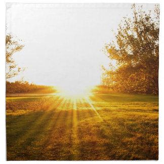Golden Sunset on the Island Napkin