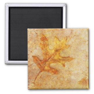 Golden Textured Leaf Magnets