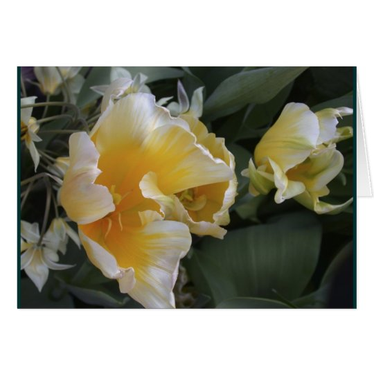 Golden Tulips Card