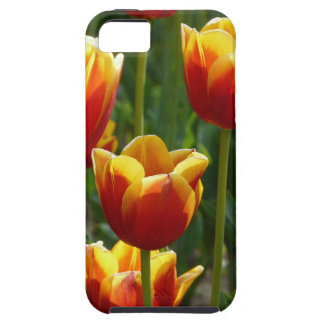 golden tulips tough iPhone 5 case