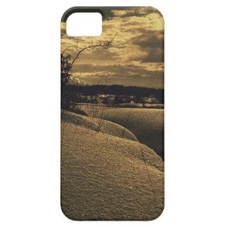 Golden winter iPhone 5 case