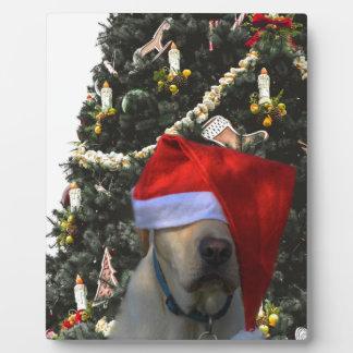 Golden Yellow Labrador in Santa Hat Christmas Plaque