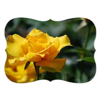 Golden Yellow Rose Bud Custom Announcements