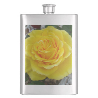 Golden Yellow Rose with Garden Background Hip Flask