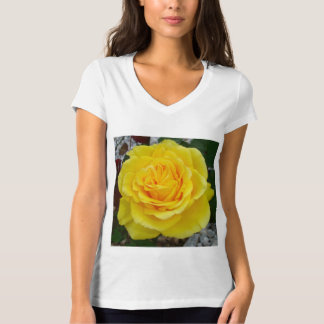 Golden Yellow Rose with Garden Background T-Shirt