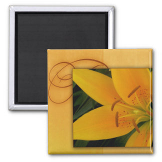 Golden yellow tiger lily for fall square magnet