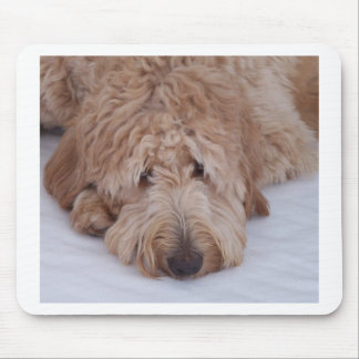 GoldenDoodle Dog Gift Mousepads / Mousemats