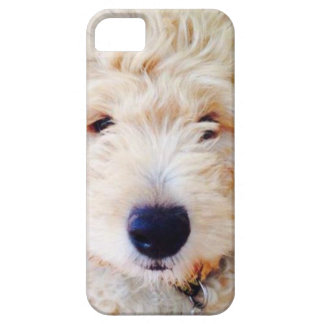 Goldendoodle Puppy iPhone 5 Covers