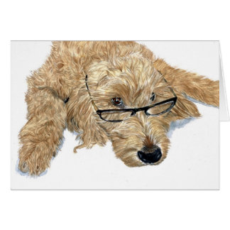 Goldendoodle Stella Greeting Cards