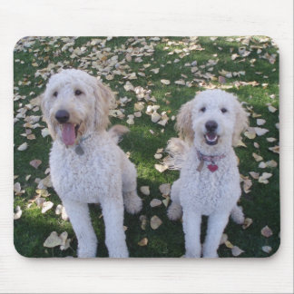 GoldenDoodles in the Fall Leaves Mouse Pad