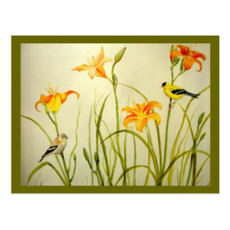 Goldfinch and Daylillies Print Postcard