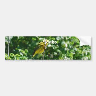 Goldfinch Bumper Sticker