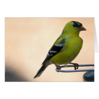 Goldfinch Greeting Card, Blank Inside Card
