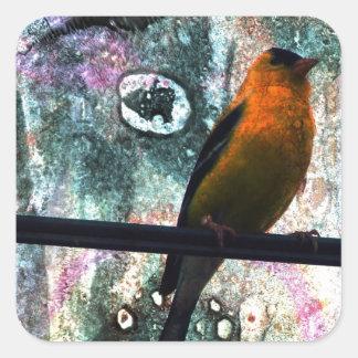 Goldfinch Grunge Square Sticker