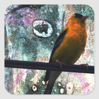 Goldfinch Grunge Square Stickers