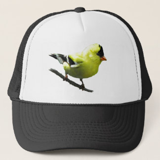 Goldfinch hat