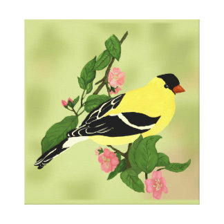 Goldfinch in a Blooming Cherry Tree Canvas Print
