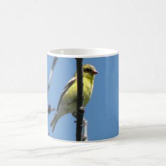 Goldfinch in a tree coffee mug