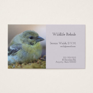 Goldfinch on moss business card