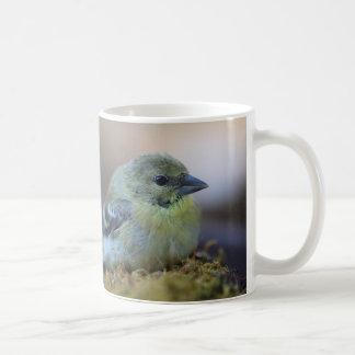 Goldfinch on moss coffee mug