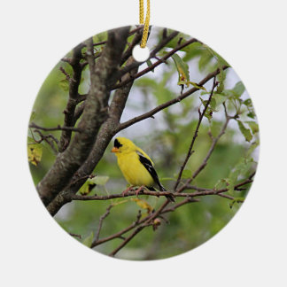 Goldfinch Round Ceramic Decoration