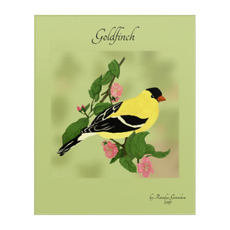 Goldfinch, Wild Canary Acrylic Wall Art